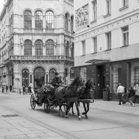 Wien-05_web