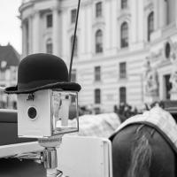 Wien-06_web